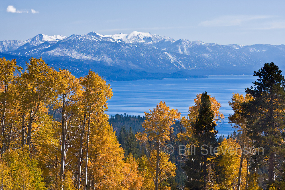 High in the mountains on the north side of the lake, at the end of a dirt road, is a meadow with a large stand of aspens. It's a good day when the aspen leaves are yellow and the mountains tops are covered with snow.
