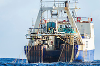 Commercial Purse-Sein Trawler with Tori-Lines at the back of the trawl deck to scare off pelagic seabirds, Cape Canyon Trawl Grounds, South Africa