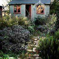 An old wooden shed and brick path