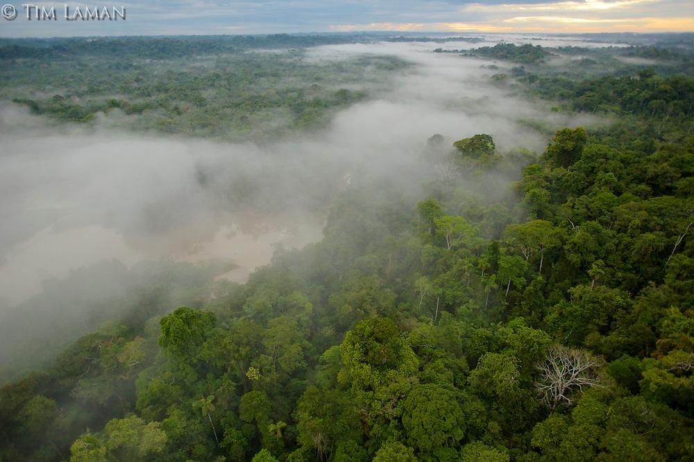 aerial view of morning mist above the Tiputini River in Yasuni National Park, Francisco de Orellana Province, Ecuador
