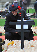© Licensed to London News Pictures. 10/11/2011. London, UK. A veteran looks at the crosses. HRH The duke of Edinburgh opens the annual Field of Remembrance at Westminster Abbey today 10 November. . Photo credit : Stephen Simpson/LNP