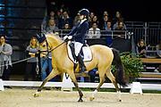 Danique Swinkels - Casimir de Luxe<br /> Indoor Brabant 2017<br /> © DigiShots
