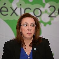 Toluca, México.- Rosy Orozco, presidenta de la Asociación Unidos Contra la Trata<br />  durante el 2do Congreso Internacional Ciudadania Activa: Participación de la Sociedad Civil en México.  Agencia MVT / Crisanta Espinosa
