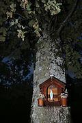 Im Greyerz ist der Volksglaube noch erhalten, Zeugnis legen Bildstäcke mit Marienstatuen ab, die am Strassenrand an Bäumen angebracht wurden. Lessoc, octobre 2006. .Oratoire en l'honeur de la vierge Marie, bédédiction dans un arbre, calvaire au bord du chemin, Lessoc, Gruyère, 2006.