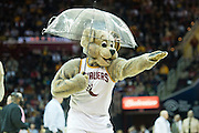 CLEVELAND, OH - MARCH 20: Cavaliers mascot Moondog makes light of a technical malfunction with the scoreboard that resulted in fluid dripping onto the court  prior to the start of the game between the Cleveland Cavaliers and the Miami Heat at Quicken Loans Arena on March 20, 2013 in Cleveland, Ohio. NOTE TO USER: User expressly acknowledges and agrees that, by downloading and or using this photograph, User is consenting to the terms and conditions of the Getty Images License Agreement. (Photo by Jason Miller/Getty Images)  *** Local Caption ***