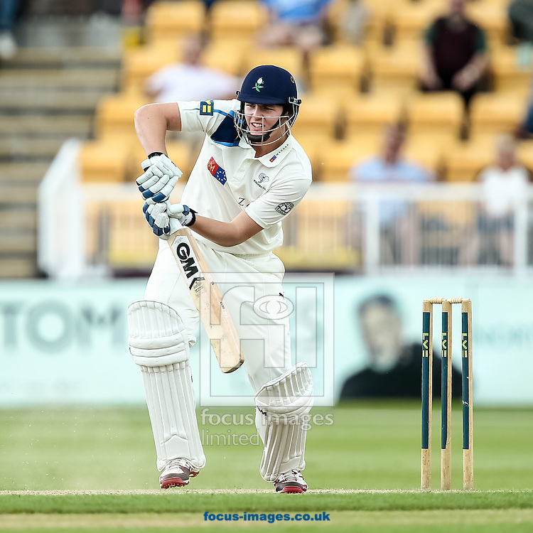 Alex Lees of Yorkshire County Cricket Club during the LV County Championship Div One match at the County Ground, Northampton, Northampton<br /> Picture by Andy Kearns/Focus Images Ltd 0781 864 4264<br /> 01/06/2014