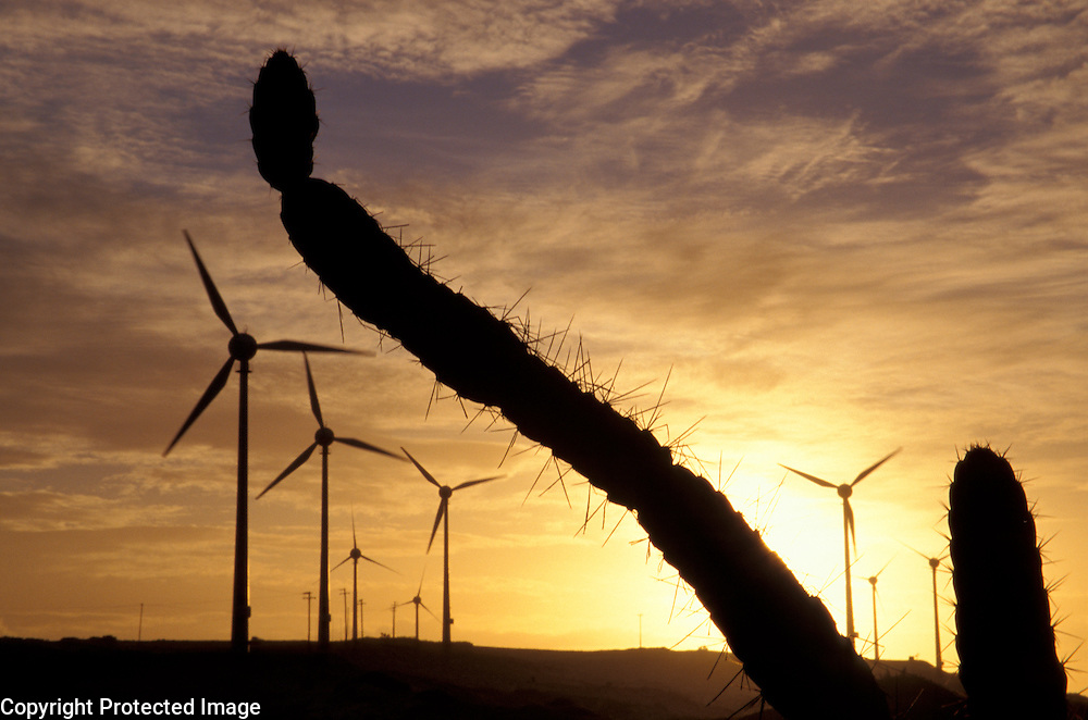 Eolian energy: biggest wind farm (10 MW) in South America using German technology at Prainha de Aquiraz near Fortaleza, Ceara, Brazil.