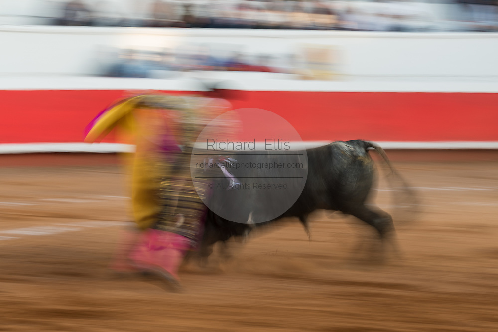 A show shutter shows the action as Mexican Matador Paco Urena presents his cape to the bull as it charges during a bullfight at the Plaza de Toros in San Miguel de Allende, Mexico.
