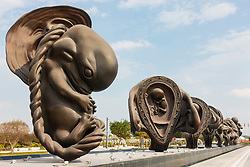 New sculptures showing stages of childbirth in the uterus at Sidra Hospital by Damien Hirst in Doha, Qatar