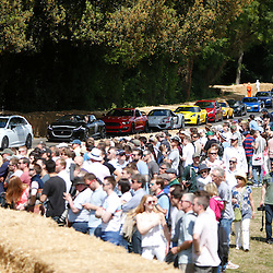 A gereral view of the crowd at Goodwood Festival of Speed, June the 27th. © Sam Todd | SportPix.org.uk