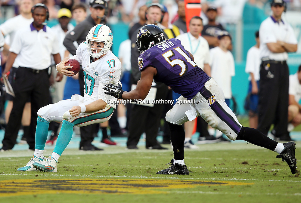 Miami Dolphins quarterback Ryan Tannehill (17) scrambles to avoid pressure from Baltimore Ravens inside linebacker Daryl Smith (51) during the 2015 week 13 regular season NFL football game against the Baltimore Ravens on Sunday, Dec. 6, 2015 in Miami Gardens, Fla. The Dolphins won the game 15-13. (©Paul Anthony Spinelli)