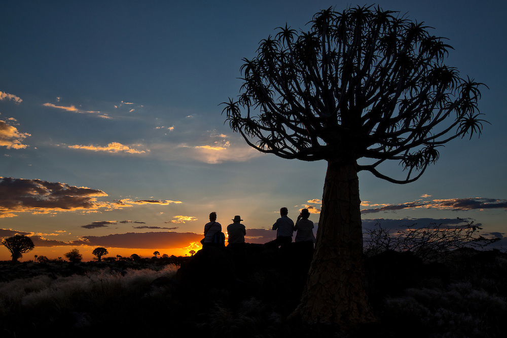 Tourists sit on the rocks and watch the sun set next to a quiver tree.