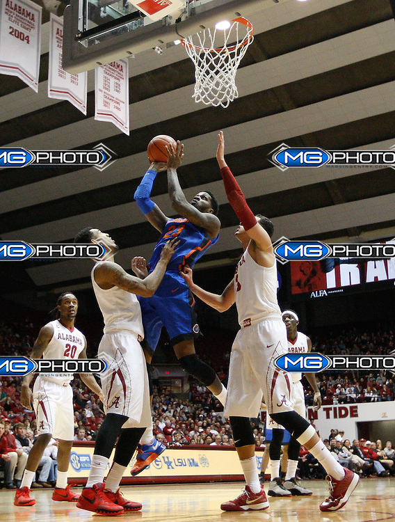 Jan 27, 2015; Tuscaloosa, AL, USA; Florida Gators forward Chris Walker (23) goes to the basket as Alabama Crimson Tide forward Shannon Hale (11) and  forward Michael Kessens (3) defend at Coleman Coliseum. the Gators defeated the Tide 52-50. Mandatory Credit: Marvin Gentry-USA TODAY Sports