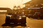 2010 American Le Mans Series (ALMS)