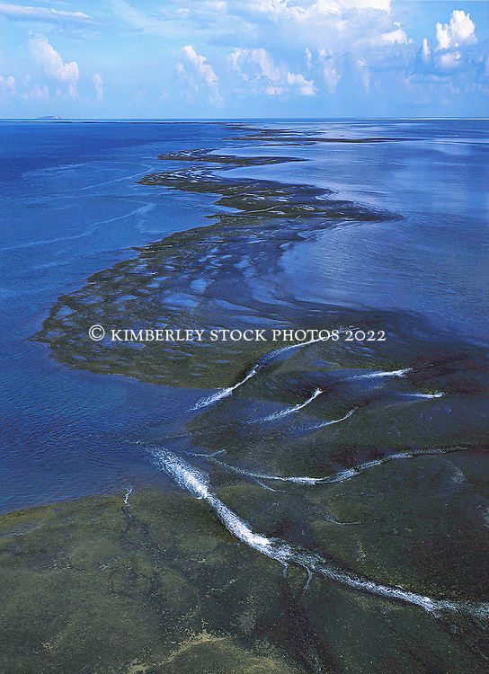 An aerial view of the falling tide on Montgomery Reef in Western Australia's Kimberley region.  Montgomery Reef in Collier Bay is Australia's largest inshore reef at 292 square kilometers.