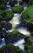 Bushkill Falls, moss and rocks below falls, Poconos, Pennsylvania