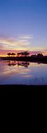 Sunrise over lake near Sarasota, Florida