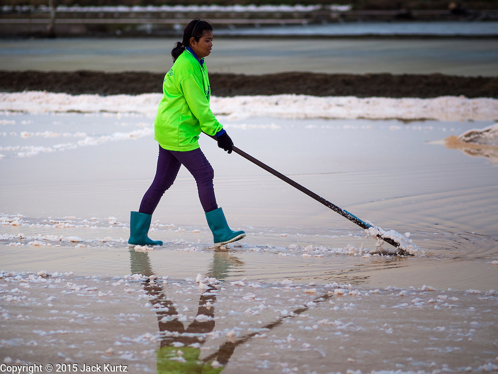 09 MARCH 2015 - NA KHOK, SAMUT SAKHON, THAILAND:  Workers rake salt into mounds to let it dry before collecting it on a salt farm in Thailand. The coastal provinces of Samut Sakhon and Samut Songkhram, about 60 miles from Bangkok, are the center of Thailand's sea salt industry. Salt farmers harvest salt from the waters of the Gulf of Siam by flooding fields and then letting them dry through evaporation, leaving a crust of salt behind. Salt is harvested through dry season, usually February to April. The 2014 salt harvest went well into May because the dry season lasted longer than normal. Last year's harvest resulted in a surplus of salt, driving prices down. Some warehouses are still storing salt from last year. It's been very dry so far this year and the 2015 harvest is running ahead of last year's bumper crop. One salt farmer said prices are down about 15 percent from last year.   PHOTO BY JACK KURTZ