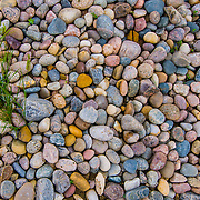 In the Devils Lake basin water is in abundance. It causes heartache and trouble but sometimes reveals beauty. Along a path near an abandoned farm the water washed away the soil revealing these colorful stones all about the same size. Marvelous.