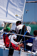 Scout's Honor, J24 Class, racing in the 2010 Bacardi Miami Sailing Week regatta.