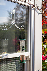 Bird feeder placed close to a window, attached with suction pad