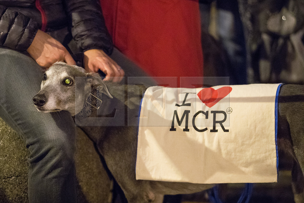 © Licensed to London News Pictures . 29/05/2017 . Manchester , UK .  A vigil is held in St Ann's Square in Manchester City Centre , exactly a week to the minute after Salman Abedi murdered 22 and injured another 64 at an Ariana Grande concert at Manchester Arena . Photo credit: Joel Goodman/LNP