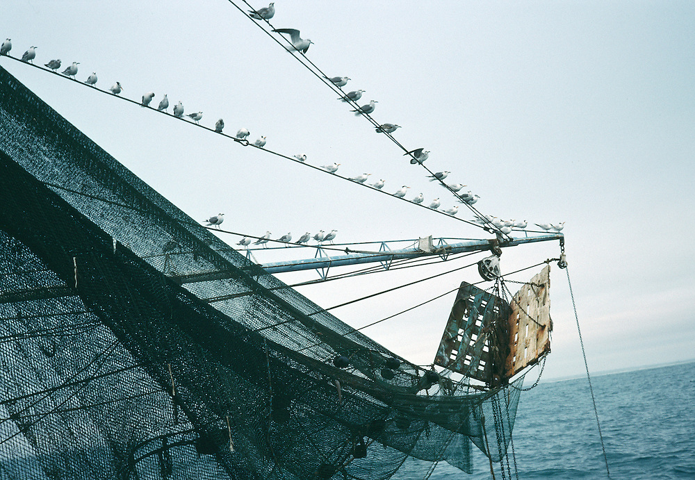 Fishing boat in the Gulf of Mexico, Tamaulipas.