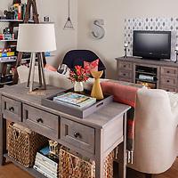 Living room media organization