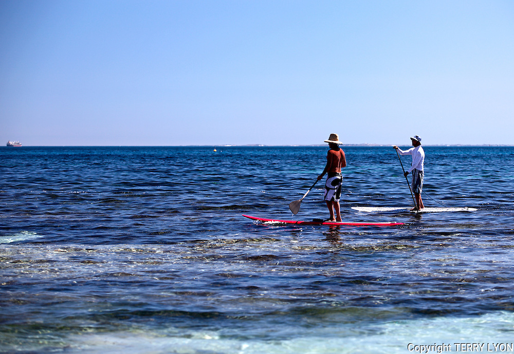 Two paddle board riders near Isolators Cottesloe Beach.