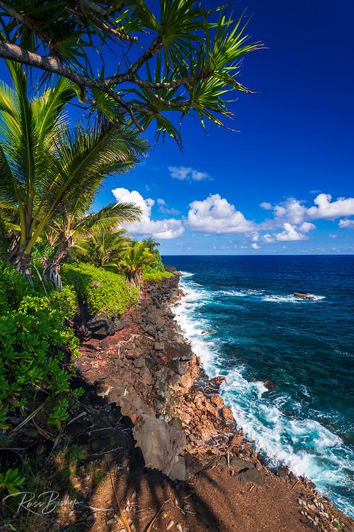 Surf and palms along the Puna Coast, The Big Island, Hawaii USA