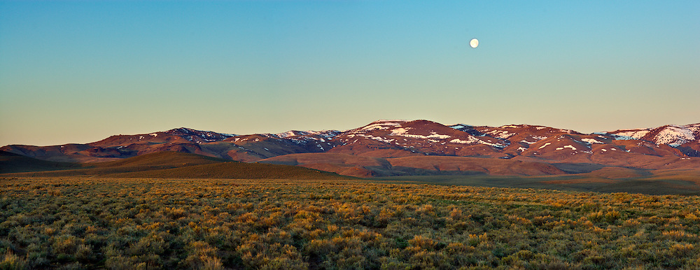 Moon setting over Owyhee Mountains and sagebrush, Idaho