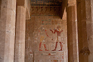 Egypt. Louxor - temple of the qeen HATSHEPSOUT  in Thebes  Louxor - Egypte    /  temple de la reine HATSHEPSOUT  a Thebes    Louqsor - Egypt