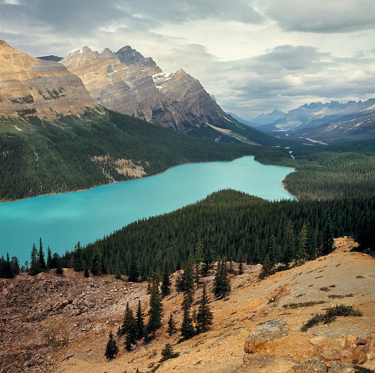 Striated mountains are the background for icy Peyto Lake, in Mistaya Valley, Banff National Park, Alberta, Canada.