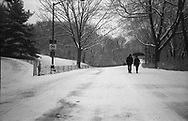 Winter in Central Park along the drive near the Metropolitan Museum 2010