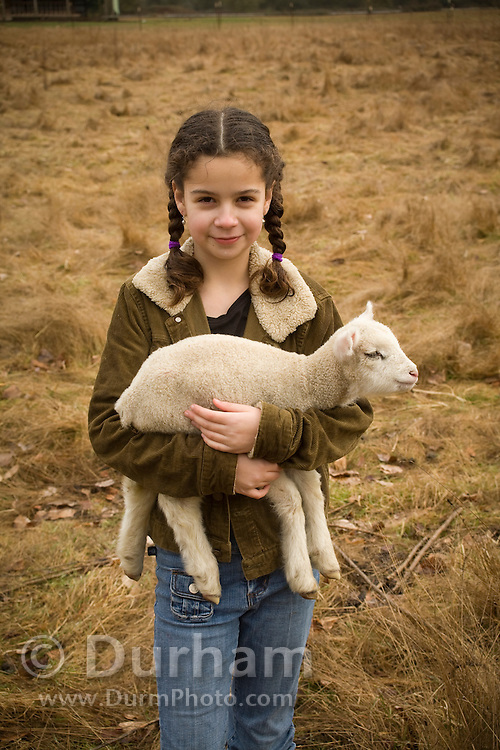 10 year old Isabel Durham carries a newborn lamb back to the barn on a small family farm, Sauvie Island, Oregon. Model and Property released.