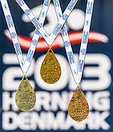 2013 - Herning Medals