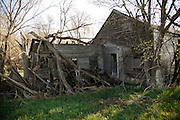A collapsed house is slowly being covered by vegatation in Monowi, Nebraska April 28, 2011. At its peak in the 1930's the town had 150 residents but after the railroad left it began to decline. Now down to a population of one, Monowi is the only incorporated town, village or city in the United States with just a single resident.  REUTERS/Rick Wilking (UNITED STATES)