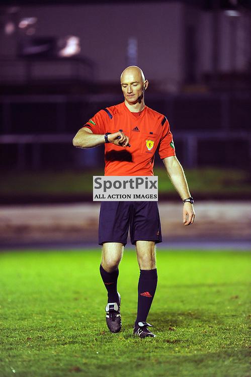Cowdenbeath v Brechin Ladbrokes League 1 Central Park 14 November 2015<br /> <br /> Ref Alan Newlands<br /> <br /> (c) David Wardle | StockPix.eu