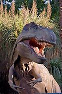 """Roma 30 Dicembre 2014<br /> """"Dinosauri in Carne e Ossa"""", mostra di dinosauri e altri animali preistorici estinti, a grandezza naturale, allestita dall' Associazione paleontologica ambientale, all'Università La Sapienza di Roma. La mostra sara aperta fino al 31 Maggio 2015. La scultura di Tyrannosaurus rex.<br /> Rome December 30, 2014<br /> """"Dinosaurs in Flesh and Bones"""", an exhibition of dinosaurs and other prehistoric animals extinct, to life-sized, prepared by Association paleontological environmental, a La Sapienza University of Rome. The exhibition will be open until May 31, 2015. The sculpture of Tyrannosaurus rex"""