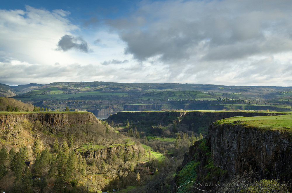 Basalt cliffs at Rowena Plateau, Columbia River Gorge National Scenic Area, Oregon
