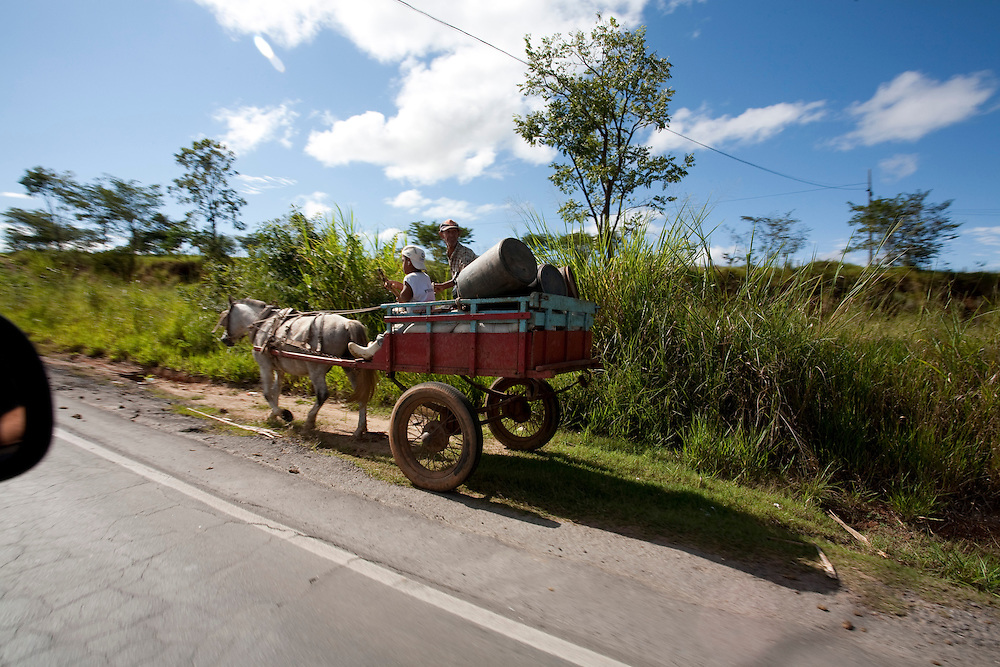 Passos_MG, Brasil...Carroca na rodovia MG 50 em Passos...A chariot on a MG 50 highway in Passos...Foto: LEO DRUMOND / NITRO