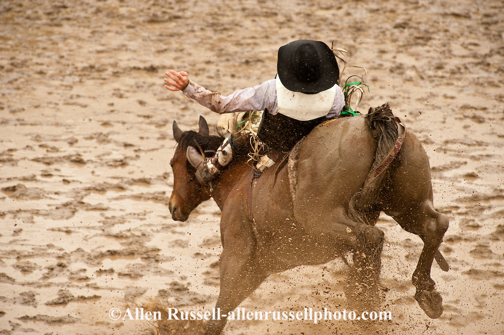 Bareback rider Spencer Brown, Miles City Bucking Horse Sale, Montana, MODEL RELEASED