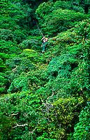 Zipline,  Canopy Tour, Selvatura Park, near Monteverde, Costa Rica