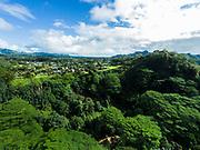 Aerial photograph of homes above the North Fork of the Wailua River, Kauai, Hawaii