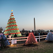 A display of smaller trees, each symbolizing one state, clustered around the main White House Christmas Tree on the Ellipse next to the White House in Washington DC. The Washington Monument is in the distance in the background.