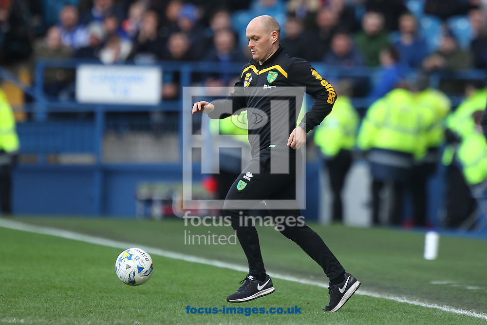 Norwich Manager Alex Neil runs on tho the pitch to retrieve the ball quickly during the Sky Bet Championship match at Hillsborough, Sheffield<br /> Picture by Paul Chesterton/Focus Images Ltd +44 7904 640267<br /> 04/03/2017