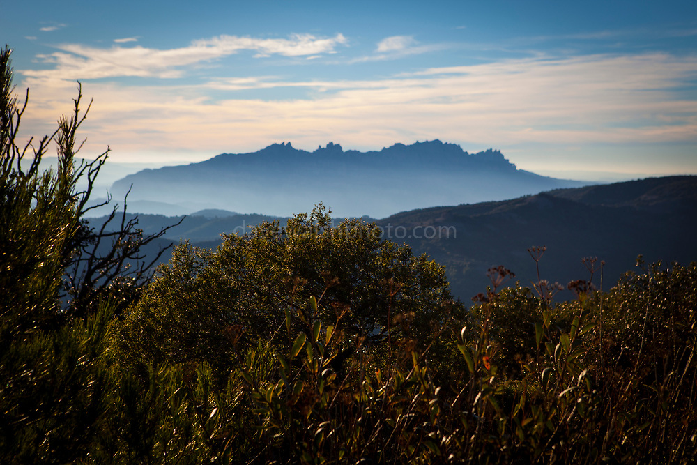 View of Montserrat, La Mola, a mountain in the park of Sant Llorenç del Munt i l'Obac - La Mola, Mountain, Barcelona, Catalonia, Spain