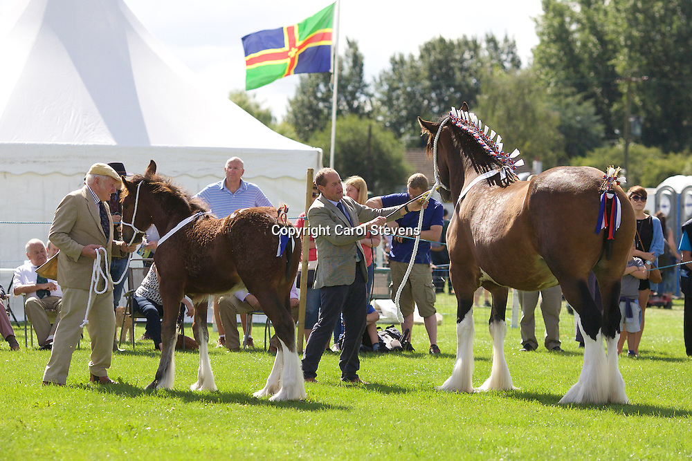Francis &amp; Mark Richardson <br /> Laurel Bank Royal Butterfly (1st Mare Class)<br /> with her foal Bewholme Georgie Girl (2nd Foal Class)