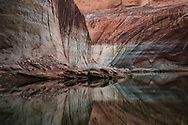 Lake Powell, Willow Canyon, Glen Canyon National Recreation Area, Utah