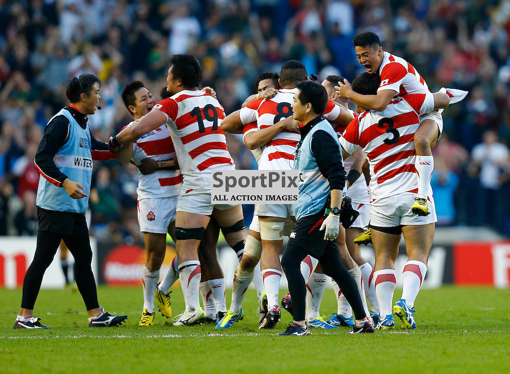 The Japanese players can hardly believe what they have just done. Rugby World Cup group game from Pool B between South Africa and Japan. at Brighton Community Stadium. (c) Matt Bristow | SportPix.org.uk